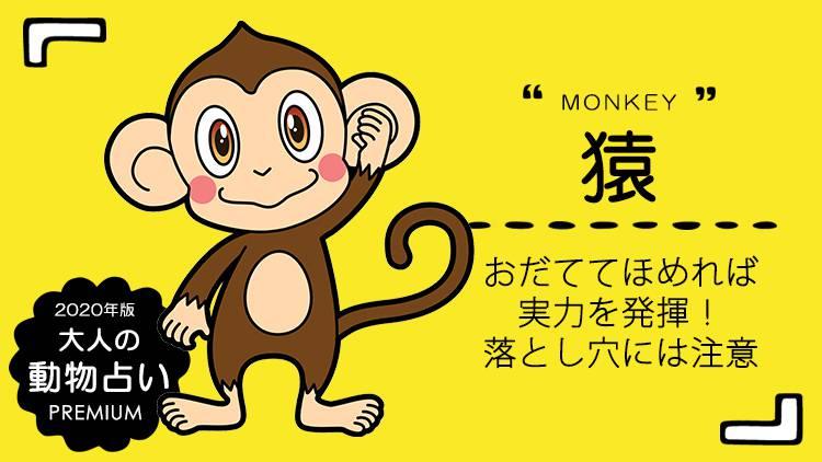 2020年 大人の動物占い®【猿】の運勢と基本性格をチェック!