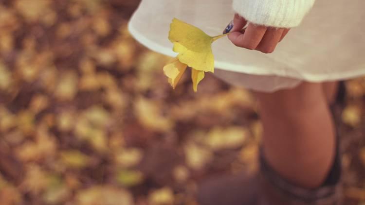 「いつも同じデート....」を解消!彼と一緒に制覇したい♡秋デートのすすめ
