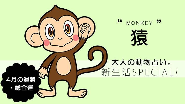 2020年4月の「大人の動物占い®」 【猿】の運勢・総合運をチェック!
