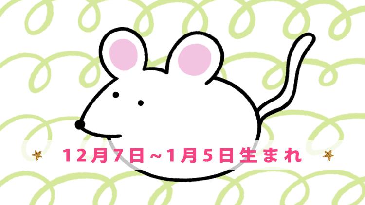 守護動物【ネズミ】(12月7日~1月5日生まれ)の恋愛グセと基本性格