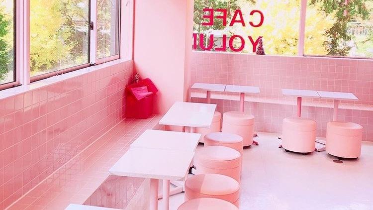 Ray公認インフルエンサーおすみ付き♡ いいね!がもらえる都内【#韓国風カフェ】5選♡