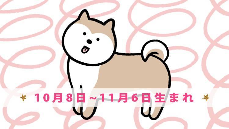 今月の守護動物占い 【イヌ】(10月8日~11月6日生まれ)の愛と運勢