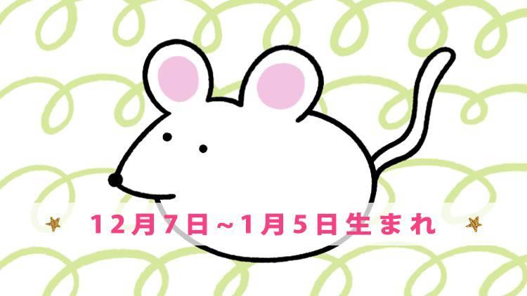 今月の守護動物占い 【ネズミ】(12月7日~1月5日生まれ)の愛と運勢