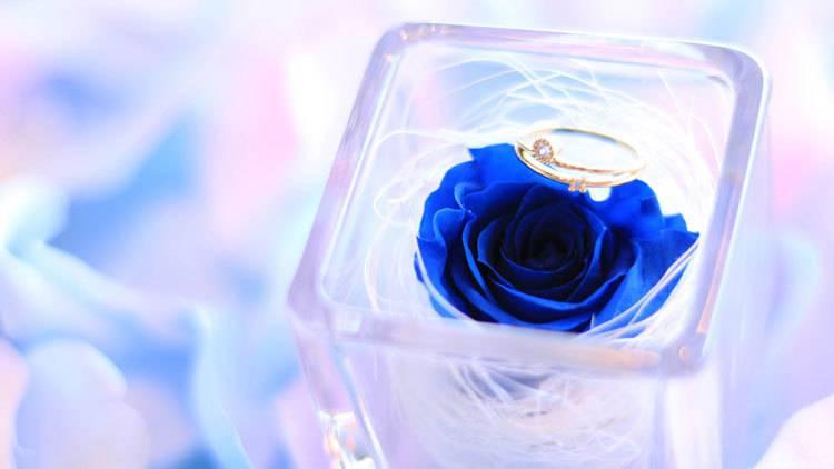 【婚活成功談】同僚への根回しから、洗脳まで!?彼氏にプロポーズさせた女子のリアル体験談5選