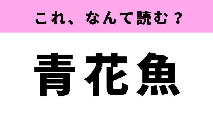 「青花魚」ってなんて読む?国民的な光り物の魚!