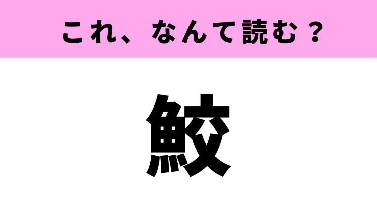 【鮫】はなんて読む?ある生き物の名前を表す難読漢字
